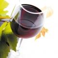 Kieliszek czerwonego wina   Fot. Depositphotos