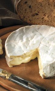 Fot. Camembert