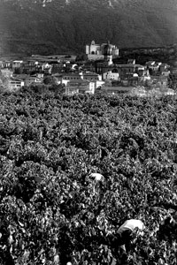 Fot. Ramón Bilbao