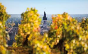 Fot. Bureau Interprofessionnel du Vin de Bourgogne