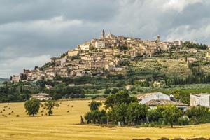 Fot. Shutterstock/Claudio Giovanni Colombo