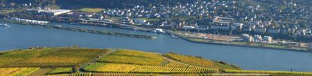 Rheingau | Fot. Sarah C.