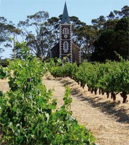 Barossa Hill of Grace. Najstarsza winnica w Australii/Fot. W. Gogoliński
