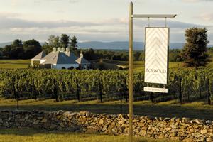 Fot. New Horizon Wines