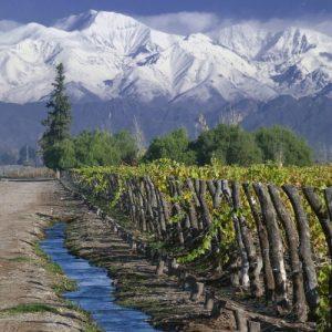 Kraina winem i wodą płynąca