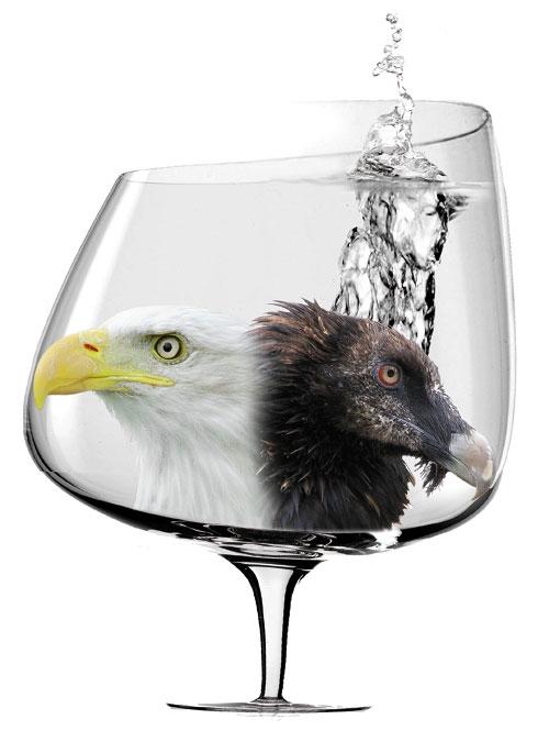 Janusowe oblicze alkoholu