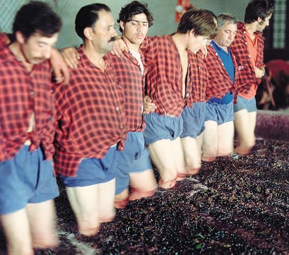 Tradycyjne wyciskanie winogron | Fot. IVP