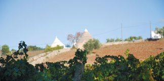Apulia | fot. J. Korn-Suchocka