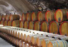 Czarnogóra. Mały kraj wielkich win