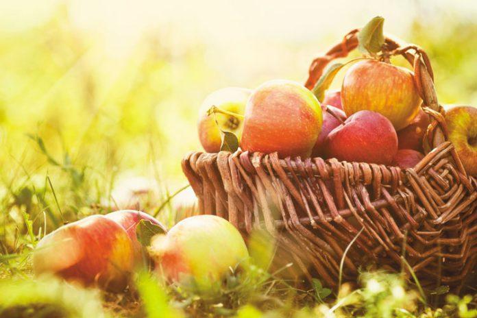 Jabłko a sprawa polska