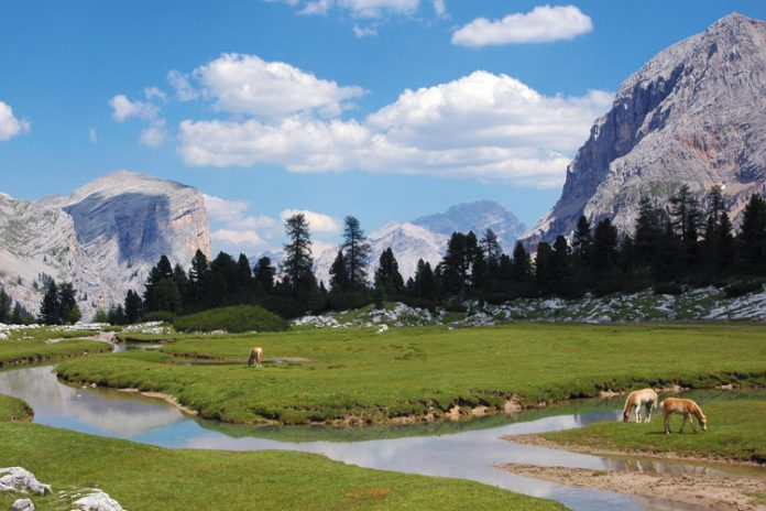 Podróż do Trydentu-Górnej Adygi