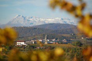 Słoweńcy biorą niemal wszystko