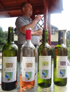 W odwiedzinach u winiarzy