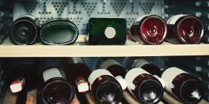 Dbamy o wino. O pożytkach z winiarki