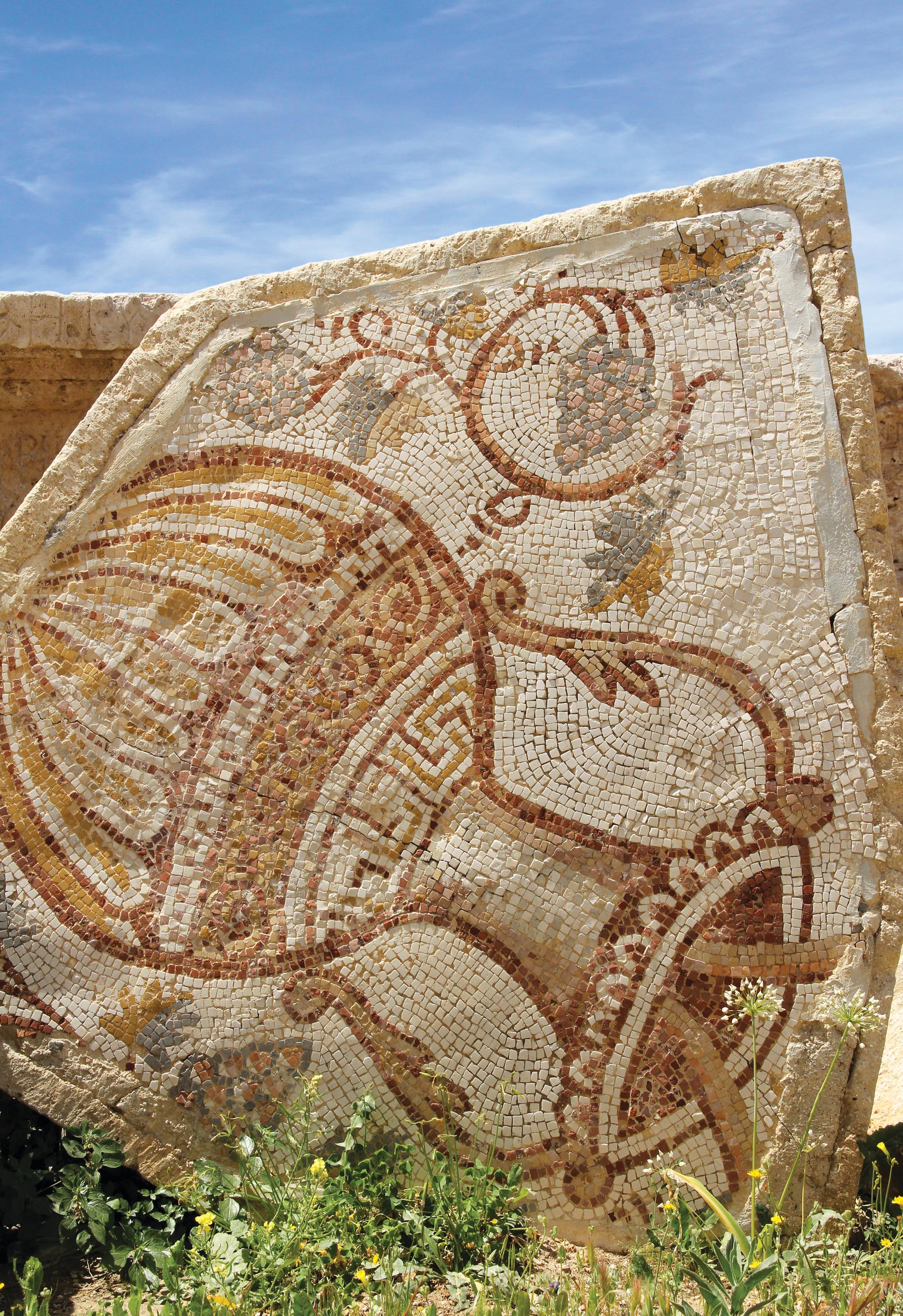 rzymska mozaika | fot. Pixeljoy / shutterstock