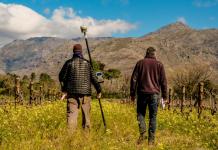 geologowie mapujący winnicę