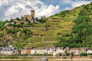 Ciepłe podbrzusze winnych Niemiec. Badenia – Palatynat – Wirtembergia