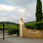 brama posiadłości Tignanello, 2018 | fot. M. Bardel