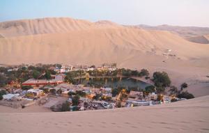 Winne oazy na peruwiańskiej pustyni