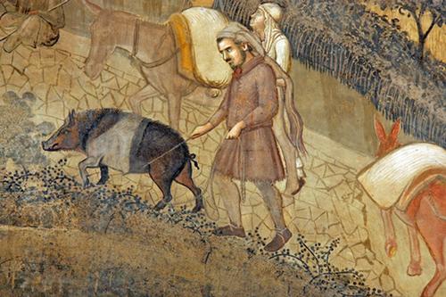 Cinta senese uwieczniona na fresku Lorenzettiego | il. Wikimedia Commons, user: JLAN