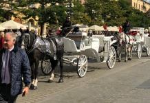 Piero Antinori z Dorotą Romanowską na Rynku w Krakowie, 29 września 2018 | fot. A. Boruta