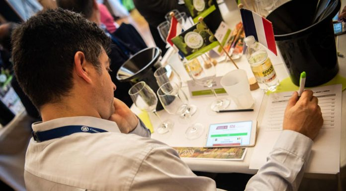Concours Mondial du Sauvignon | fot. Flickr CMS