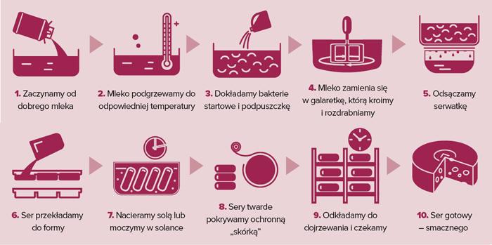 Ser w 10 krokach | infografika © Czas Wina