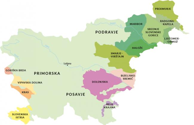 Mapa winiarska Słowenii | © Czas Wina