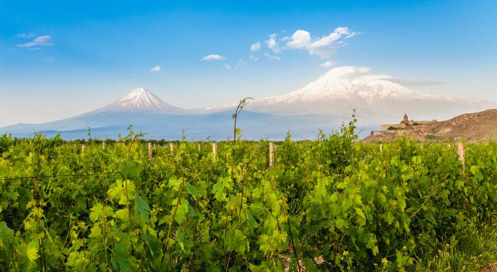 Armenia winnice Ararat wina z Armenii