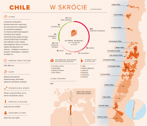 Wino z Chile, infografika