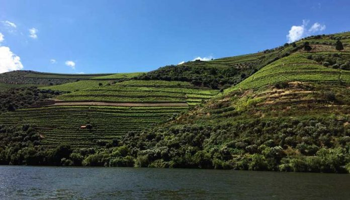 Podróż przez północną Portugalię