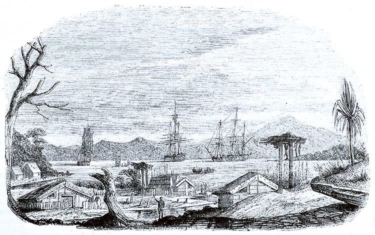 Zatoka Akaroa