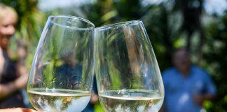 Vinho Verde – gra w kolory